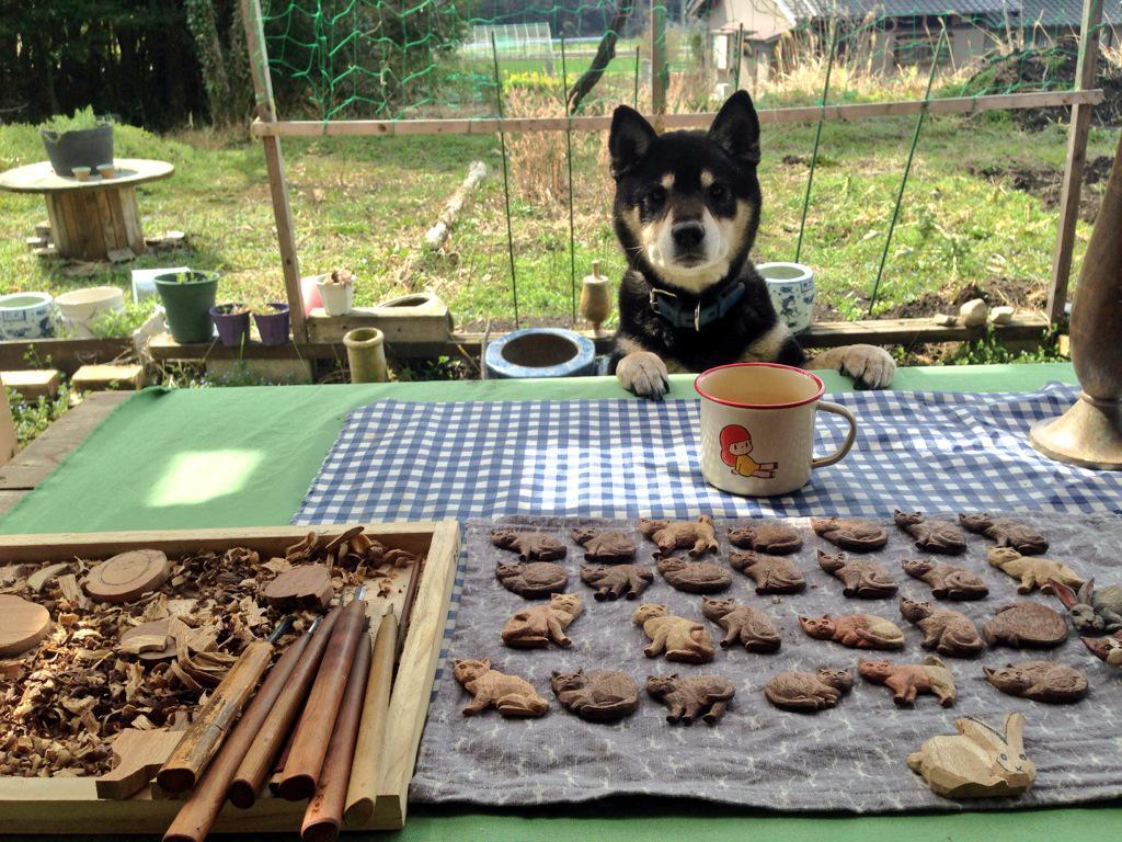 天気がいいとテラスで彫刻するのですが、犬がしょっちゅうクッキーかと思って見にきます。 pic.twitter.com/WDJWW1a6nR