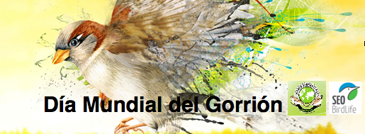 #WorldSparrowDay #diamundialdelgorrion . Can  you imagine a world without sparrows?  http://t.co/1fc0mFehX0 http://t.co/E0WaKVdavh