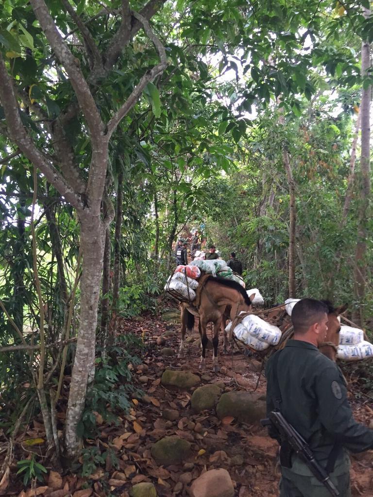 problema migratorio en Venezuela - Página 5 CAjoFXKWcAAXzra