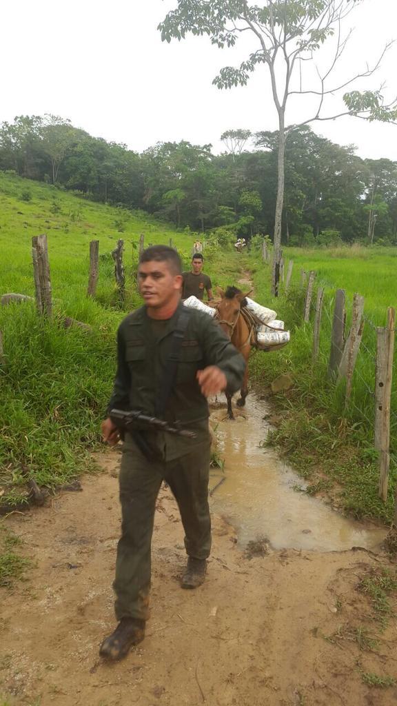 problema migratorio en Venezuela - Página 5 CAjoIXbWcAAuMlZ