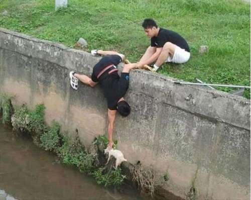 川岸に落ちた猫を救う二人の青年浸水した建物から子犬を救う男性一生懸命猫に酸素吸入する消防士(その脇で親を見守る子猫)犬を背中に乗せて救い出す飼い主命を救おうとする姿は美しいどんな時でもこういう事が出来るようにしたい pic.twitter.com/LA5jDbmmjc