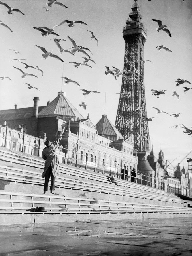 CAueoxlUkAArW8L - Blackpool tower at 125