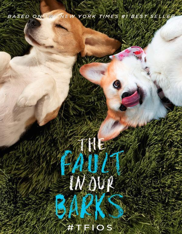 Puppies? Puppies. Happy #NationalPuppyDay from #TFIOS! http://t.co/DE4pvKXONK