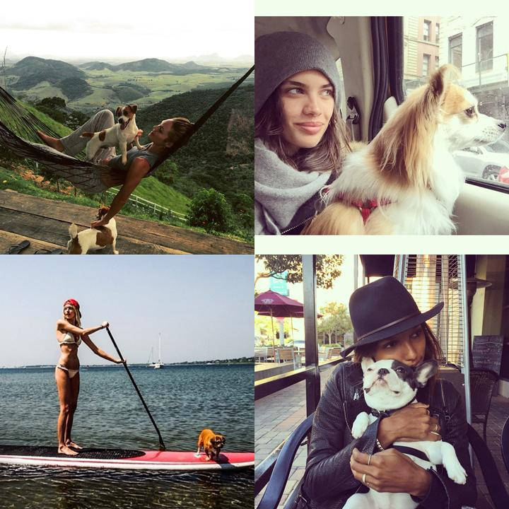Models + puppies = way too much cuteness!! #NationalPuppyDay http://t.co/GYtf8uvVGc