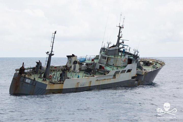 Sea Shepherd: La nave bracconiera Thunder affonda in circostanze sospette