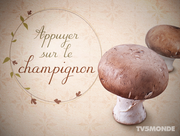[フランス語表現 , 食べ物] Appuyer sur le champignon (直訳:キノコを押す。) 意味:加速する(乗り物で)。 pic.twitter.com/jzRB3HMgcn