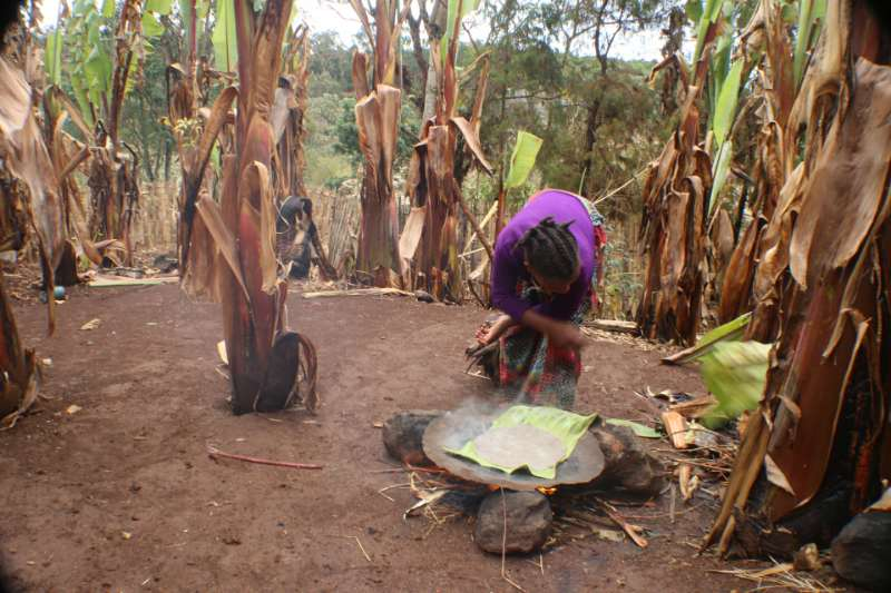 ...it is then baked into a pancake called a kocho and eaten with hot sauce and honey #KewEthiopia. http://t.co/D4DW0zSP31
