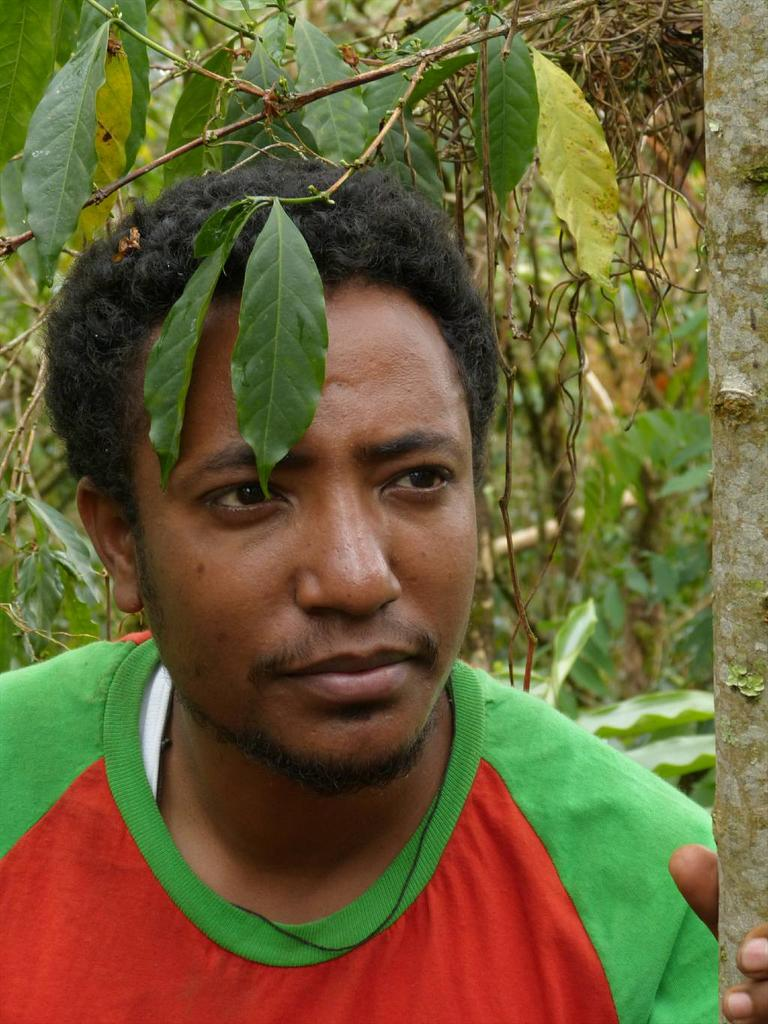 Meet our Ethiopian colleague from Addis Uni, Mekbib, lecturer in botany and all round nice chap #KewEthiopia #coffee http://t.co/L67IE3op0d