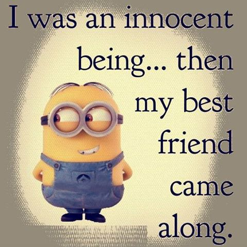 We Are Best Friends Funny Minions Quote. At December , 2017. Minion Quotes  (@minionquotesimg) Twitter