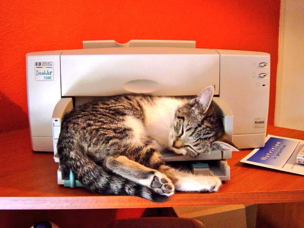 Картинки прикольный принтер