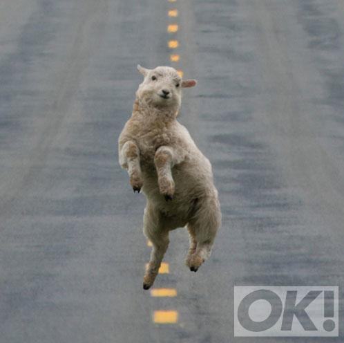 RT @OK_Magazine: On Fridays, we be like... http://t.co/f8I8p3z58J