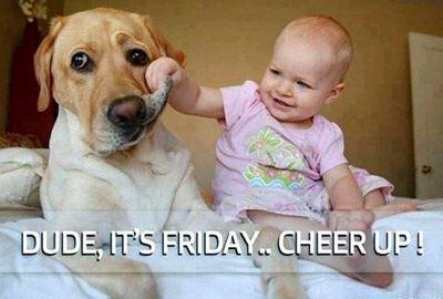 Morning everyone! Nearly the weekend 😊 http://t.co/0iyEvHnffm