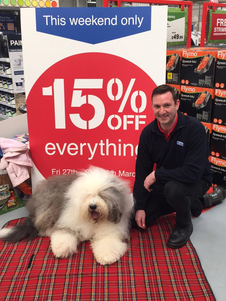 RT @Snowelf: #dulux dog at #wickes Chatham grand launch and 15%off everything weekend. http://t.co/hrjfnssHZ0