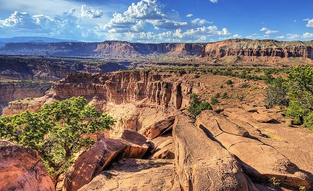 25 Incredible Parks Everyone Should Visit. http://t.co/VefzDBj48N  @CapitolReefNPS @NatlParkService http://t.co/bArDLWD7Ok
