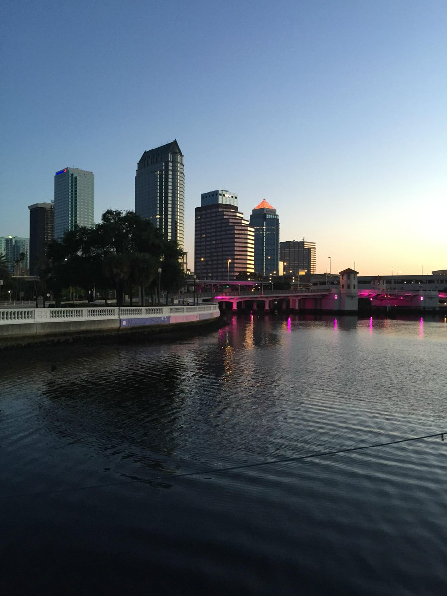 WHAT TO DO TODAY IN TAMPA