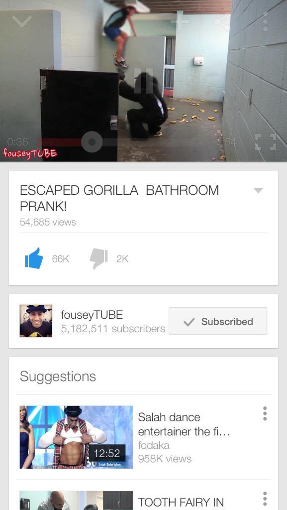 Escaped Gorilla Bathroom Prank ali alsabbar (@cool1232hi) | twitter