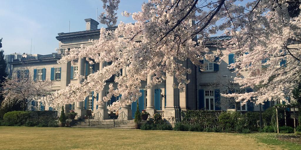 うららかな春の陽気で、英国大使館内の桜もほぼ満開です。サー・アーネスト・サトウ英国公使館公使の命により、現在の英国大使館前に最初の桜の木が植えられたのが1898年。現在、大使館敷地内には約50本の桜の木が植えられています。 http://t.co/HoMjJr4mjy