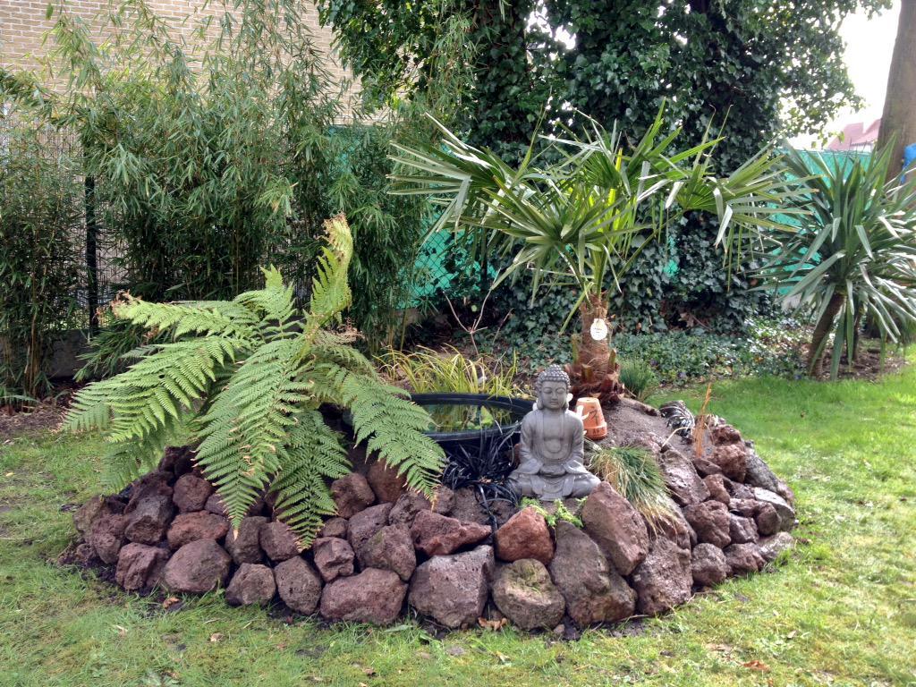 """Jardin """"La Palmeraie"""" à Renaix (B) - Page 3 CBWPEETWUAARpay"""