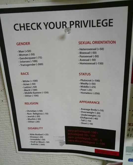 Image result for Privilege