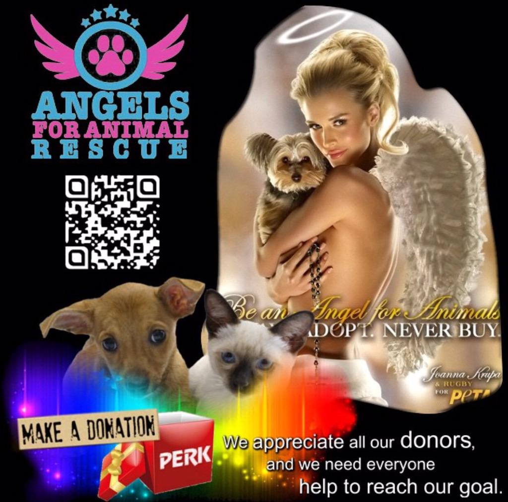 RT @angels4animalre: @angels4animalre: Help make it happen for 'Angels for Animal Rescue' http://t.co/lpTUuU03QE #indiegogo http://t.co/ESx…