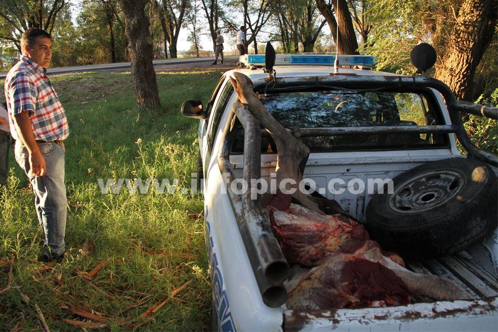 Gral.Pico | Rápido accionar policial esclareció hecho de abigeato