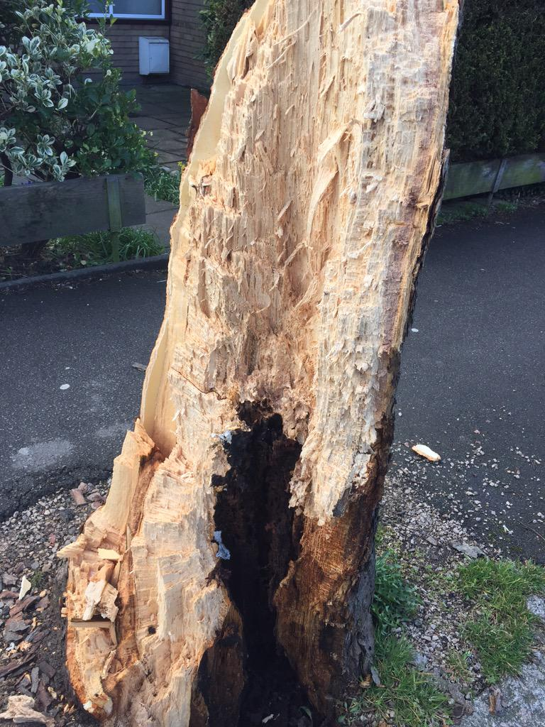 """RT """"@originalcoco: post storm carnage #windy #london tree missed house by a cm, car was less lucky! http://t.co/jCI28SHL3w"""" YIKES!"""