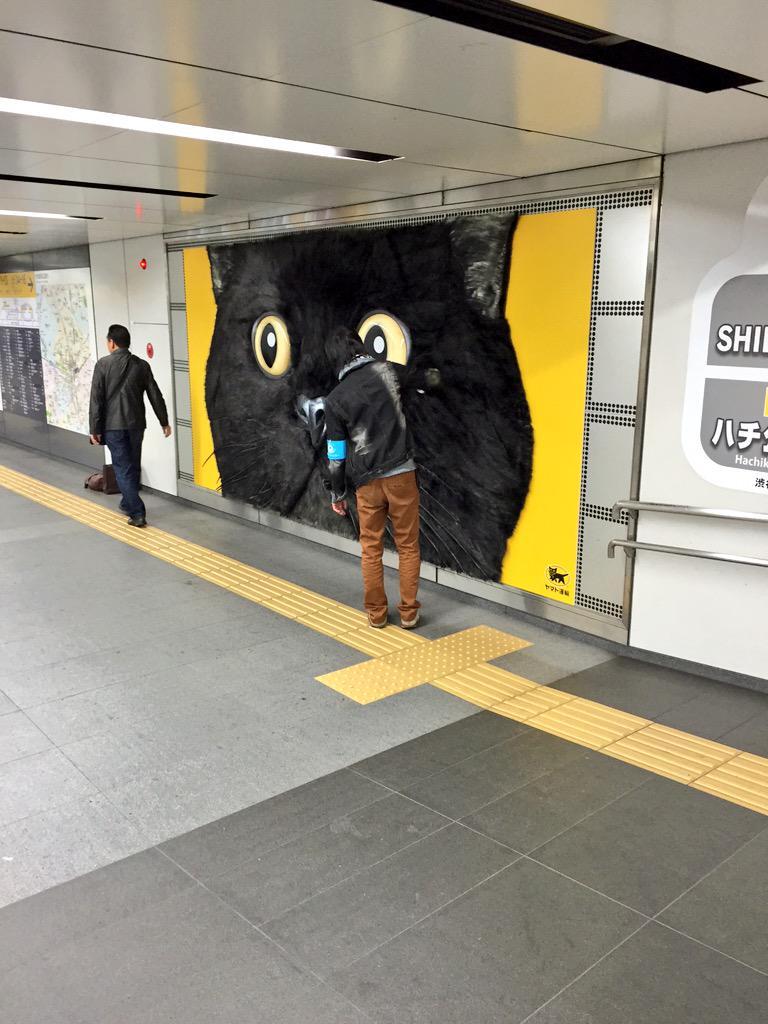 渋谷駅に掲出されてるクロネコヤマトの広告がもしゃもしゃしててすごいんだけど、何がすごいって毛並みを整えるお兄さんがブラシ持って常駐。 http://t.co/Ix8Yp0Qbv2