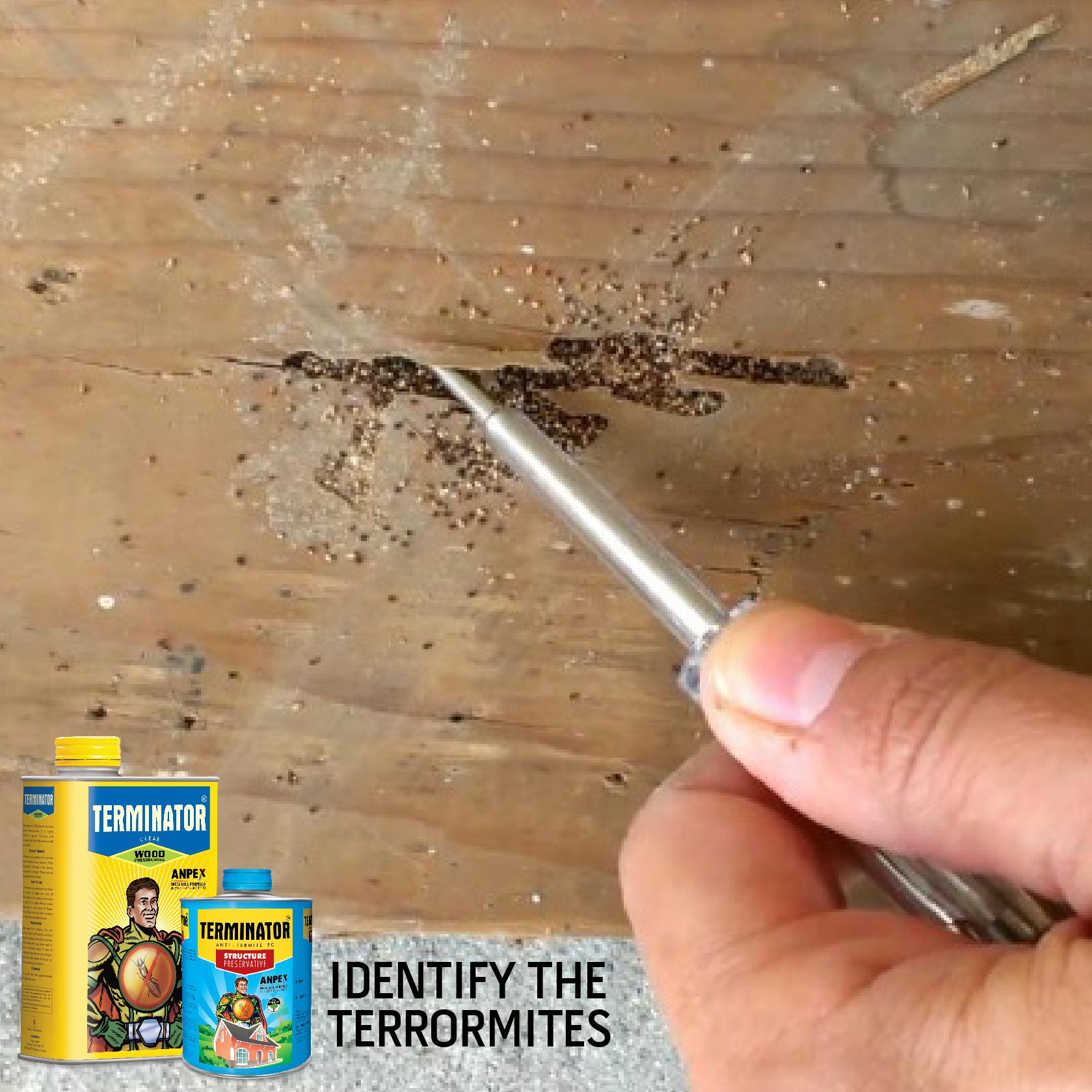 The End Of Termites On Twitter A Wood Colored Droppings From Your Furniture Known As Frass Is A Sign Termites Infestation Knowthem Http T Co Ow9qei1pan