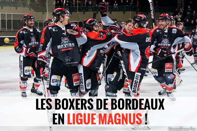 Les Boxers de Bordeaux en Ligue Magnus !