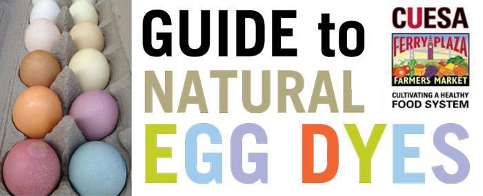 Easter egg dyes with cabbage and beets? Our guide to natural egg dyes will show you how: http://t.co/JYKI90e8tg http://t.co/HYYene1PNn