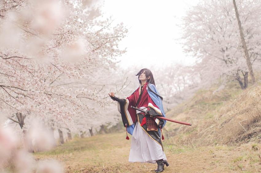 【とうらぶ撮影・速報1】満開の桜でした。広大な桜並木を独り占めできる最高のロケーション。 和泉守兼定/えいち様(@EIC1015)
