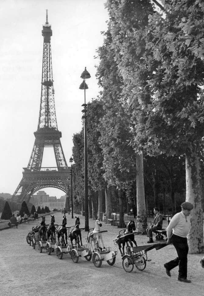 ------* SIEMPRE NOS QUEDARA PARIS *------ - Página 2 CBxRQimXIAUu482