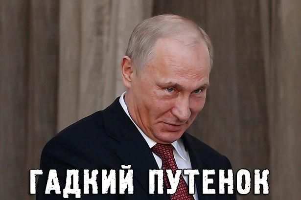 """""""Надеюсь, что не вечно"""", - Путин о продолжительности конфликта на Донбассе - Цензор.НЕТ 5609"""