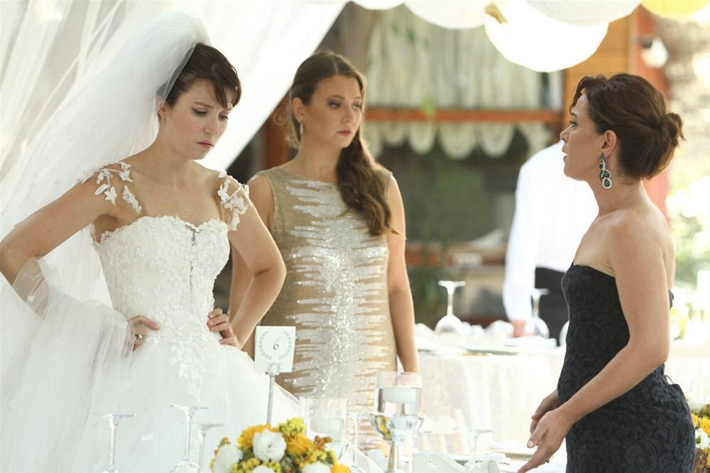 основные принципы сельма эргеч фото свадьбы задачей