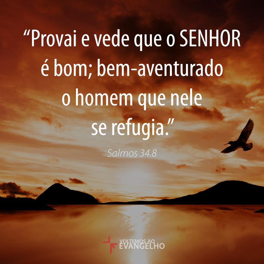 """""""Provai e vede que o SENHOR é bom; bem-aventurado o homem que nele se refugia."""" Salmos 34.8 http://t.co/cnS7NQyL6p"""