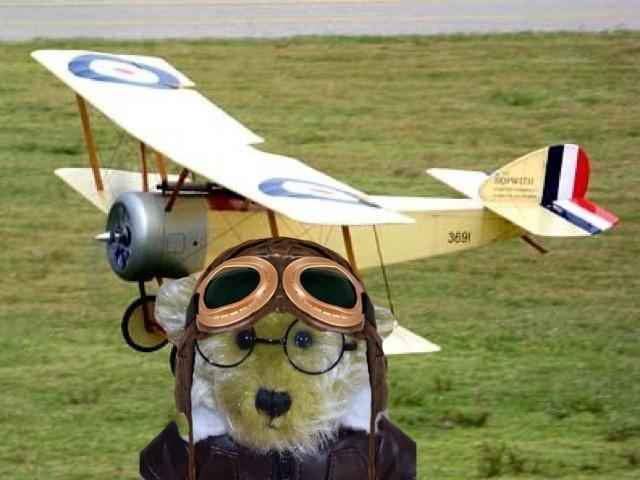 Uniform Alpha 14 swopping in for #TheAviators adventure Lucky @lucky_GSD http://t.co/nPacAE5DSV