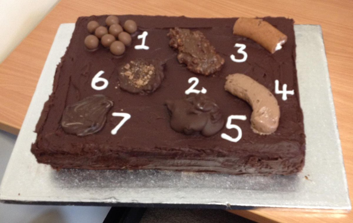 Cathy Winfield Rn Msc On Twitter Helenforresth Cathywinfield The Cake In All It S Glory Http T Co Vmqf968b4s Our Bristol Stool Chart To