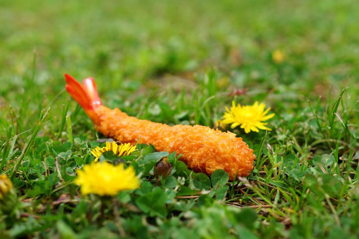 春の訪れを感じますね http://t.co/lkemLrfDKn