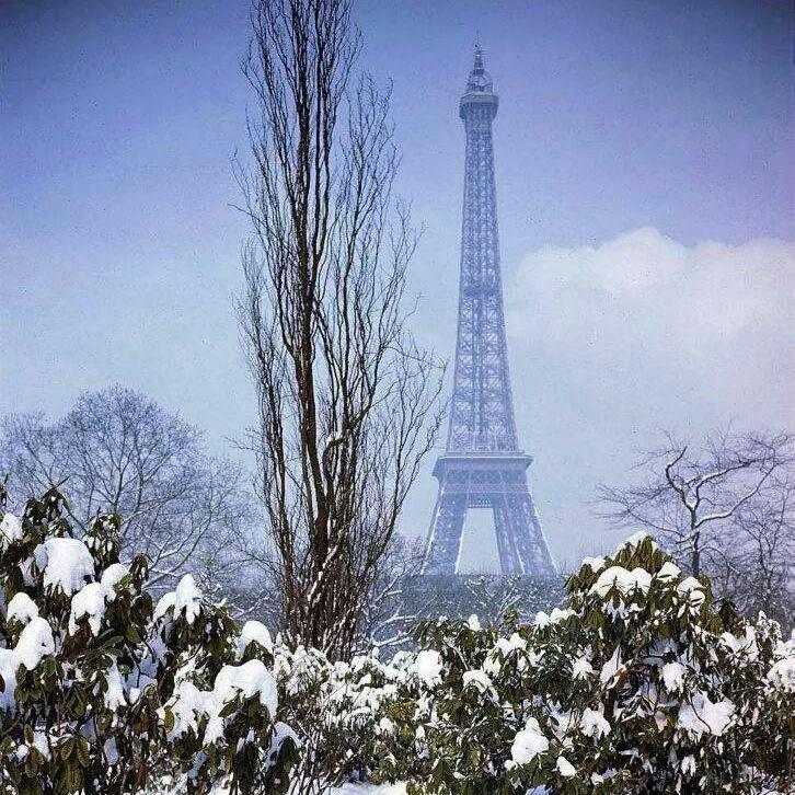 ------* SIEMPRE NOS QUEDARA PARIS *------ - Página 2 CCBJtksW0AAwMVd
