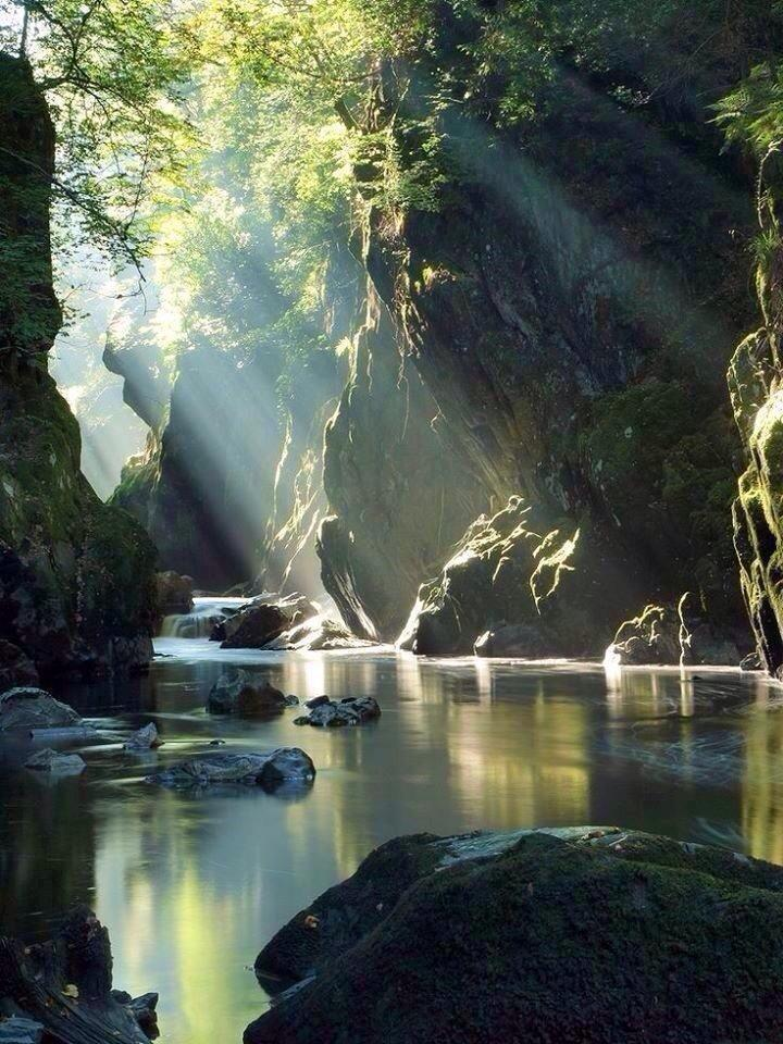 The human spirit needs places where nature has not been rearranged by the hand of man...  http://t.co/JWcB0mizgT RT @PardueSuzanne