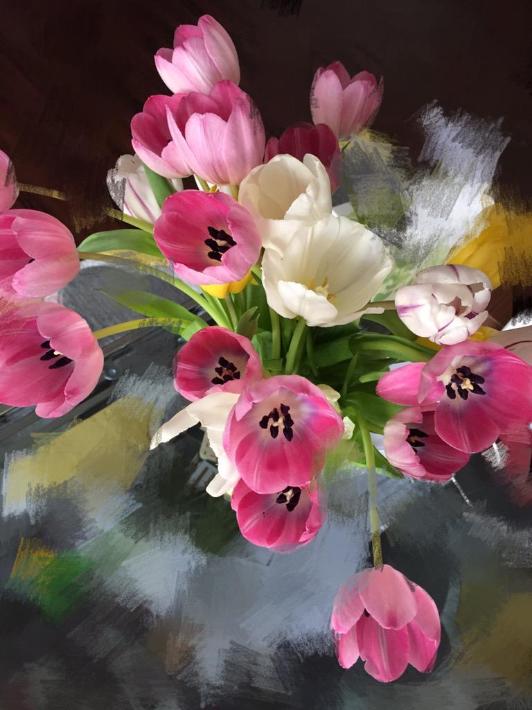 Plaid Jack Ma On Twitter Really Beautiful Flowers I Like It Http