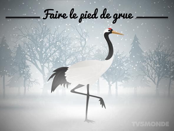 [フランス語表現 , 動物] \u0026quot;Faire le pied de grue\u0026quot; 直訳:ツルのような足取り。 意味:立ったまま何もせずに待っていること。 pic.twitter.com/1HGtBPk1Hm