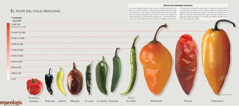 Peperoncino piccante, quello che in Messico chiamano chile