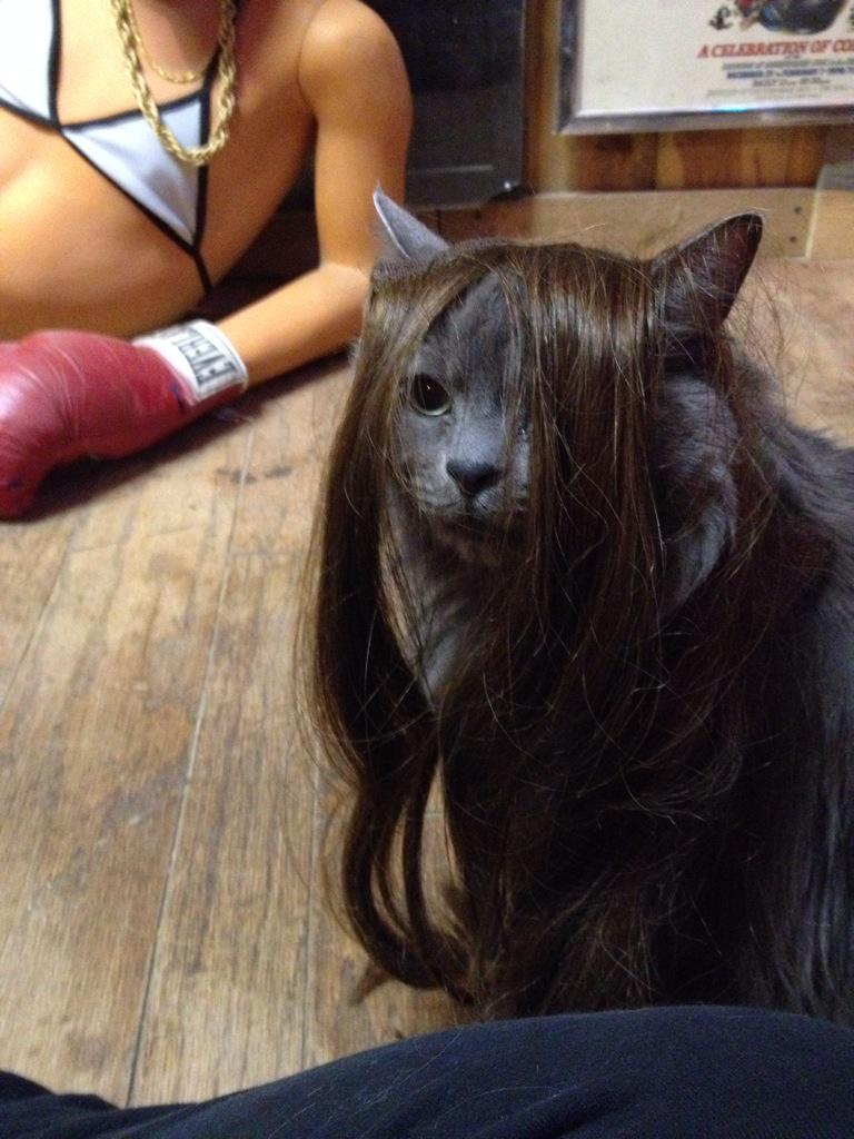 Jenna marbles on twitter also hair extensions apparently look 0 replies 0 retweets 7 likes pmusecretfo Image collections