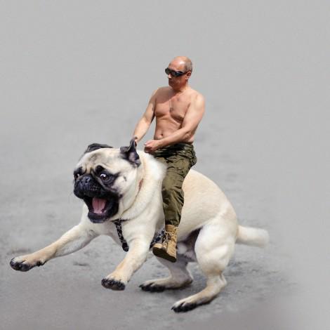 Ce tweet est désormais illégal en Russie. http://t.co/3d7F4qGWz1 http://t.co/8rtHlATcBz