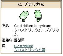 """醸して学ぶbot a Twitteren: """"C.ブチリカム 偏性嫌気性で芽胞を形成する桿菌。 酪酸発酵菌の一つ。漬物が好きらしい。  医薬品や飼料として使われている。 一部の株はボツリヌス毒素を作ることができる。 https://t.co/UkAIA9CkUl"""""""