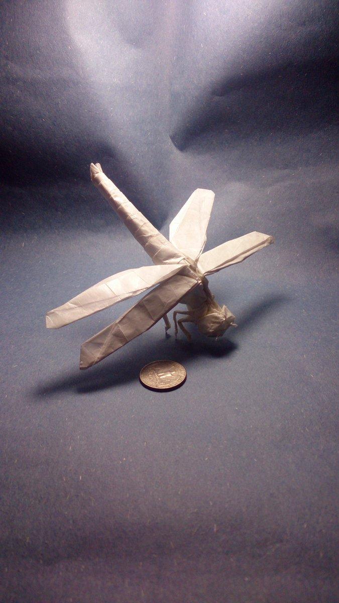 Satoshi Kamiya Dragonfly by Satoshi Kamiya Dolphin