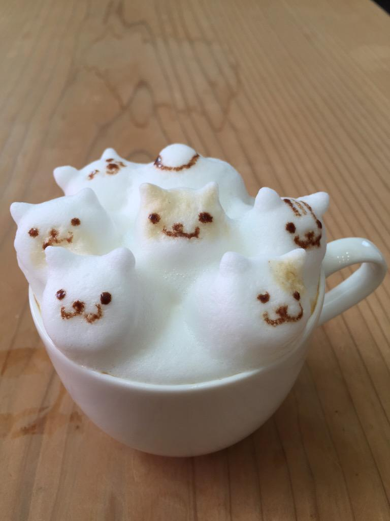 Kitty Cat Cafe