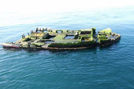 4年間ずっとそこで(´ー`)。。「大震災で日本から流された漁船が米オレゴン州に漂着、生け簀に生きた近海魚」jiji.com/jc/zc?k=201504…「残骸のいけすには日本近海に生息するヒラマサとイシダイが生きたまま確認された」 pic.twitter.com/PGuCmCCxjH