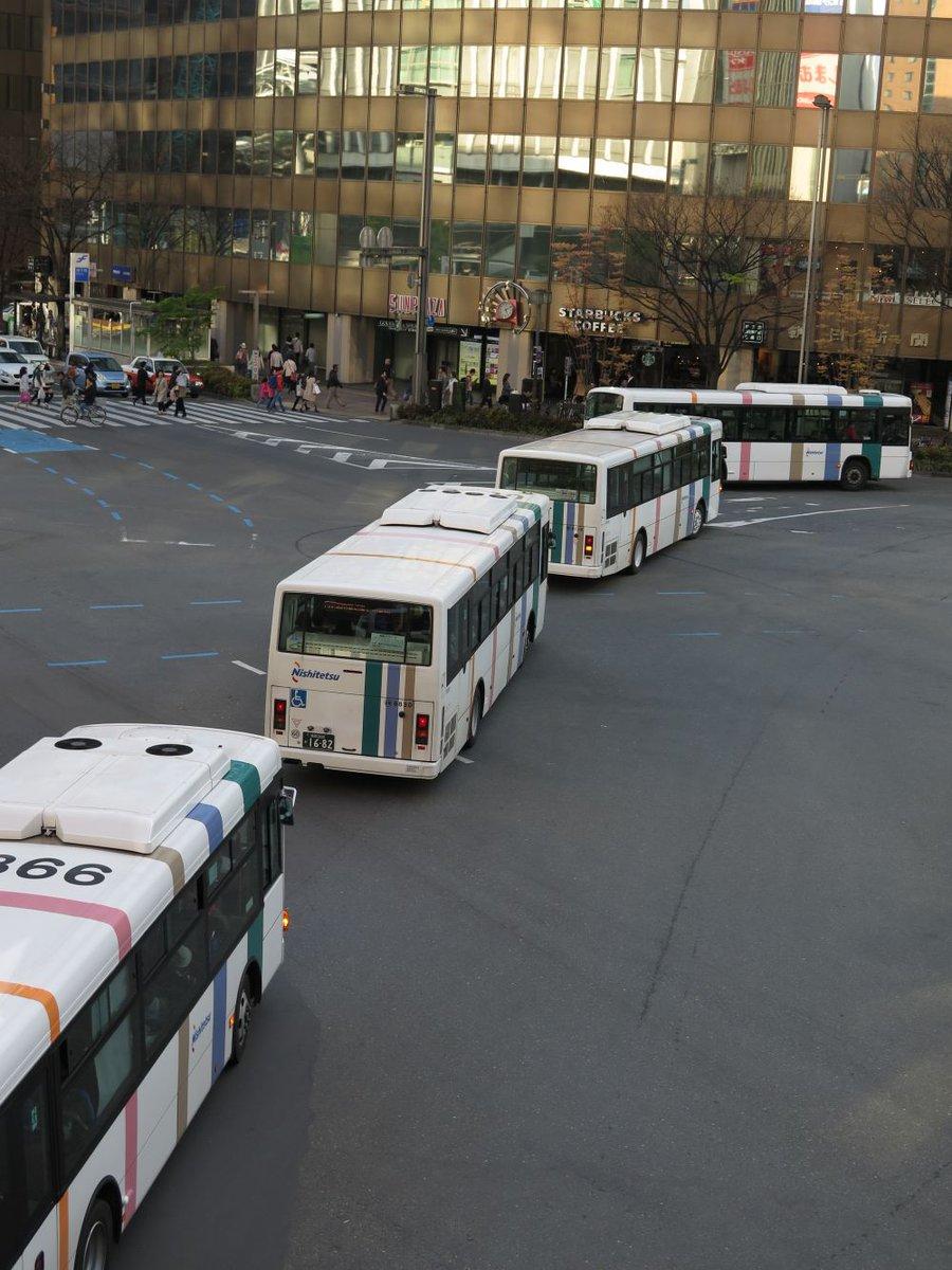 生まれたてのバスは初めて見たものを親だと認識してついていきます。 pic.twitter.com/LD6vVzF0Nc